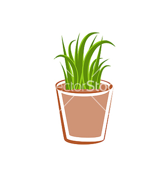 Free flowerpot with green grass plants vector - Free vector #238217