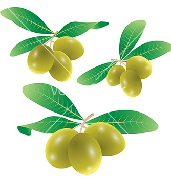 Free set of olives vector - vector gratuit #239057