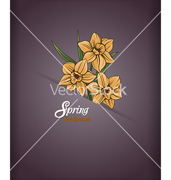 Free floral background vector - Free vector #240267