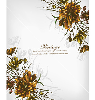 Free floral vector - Free vector #240807