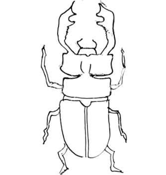Free stagbeetle vector - Free vector #242357