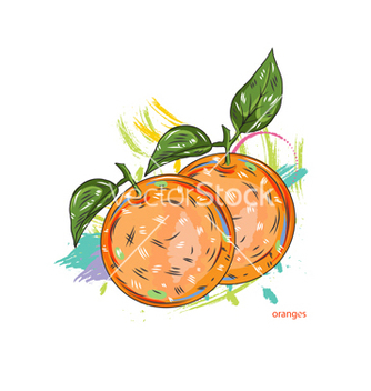 Free oranges with colorful splashes vector - Kostenloses vector #243257