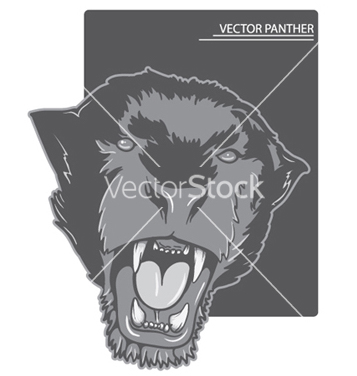 Free angry panther vector - Free vector #253617