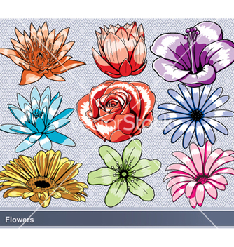 Free colorful flowers set vector - Free vector #260467
