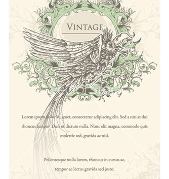 Free vintage ilustration with crow vector - бесплатный vector #261637