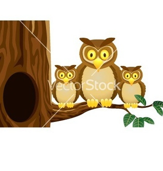 Free owl family vector - бесплатный vector #267087