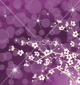 Free cherry tree blossoms vector - Free vector #267717