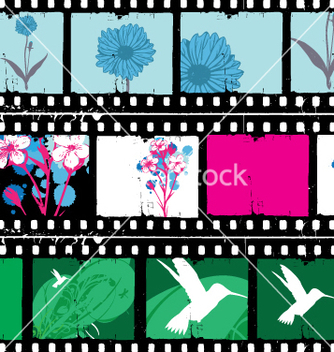 Free floral film strips vector - бесплатный vector #269587