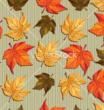 Free autumn vector - бесплатный vector #270087