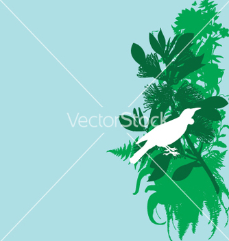 Free tui and pohutukawa vector - бесплатный vector #270997