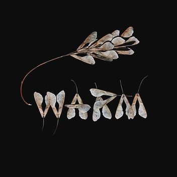 Word warm made of dry leaves of ash tree on black background - Free image #272227