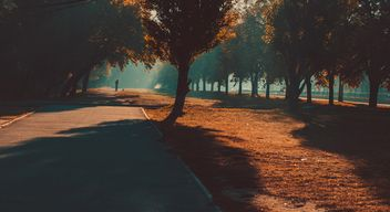Autumn park in sunlight - image gratuit #273797