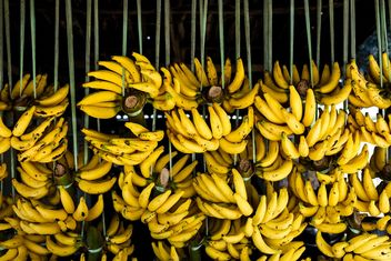 Bananas on street market - бесплатный image #275037