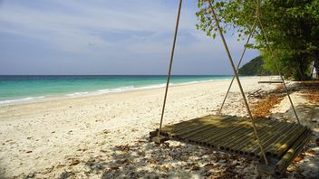 bamboo swing by the beach - бесплатный image #275107