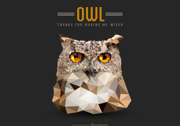 Free Vector Low Poly Owl Head - Kostenloses vector #275257