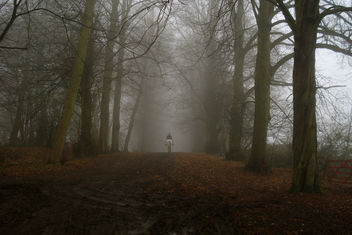Lonely rider on a damp winter morning - image gratuit #279217