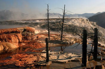 Nature - Mammoth Hot Springs, Yellowstone National Park - бесплатный image #280007