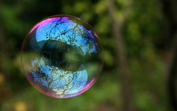 Reflection in a soap bubble - image #280367 gratis