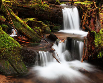 Spring Runoff - image gratuit #284217
