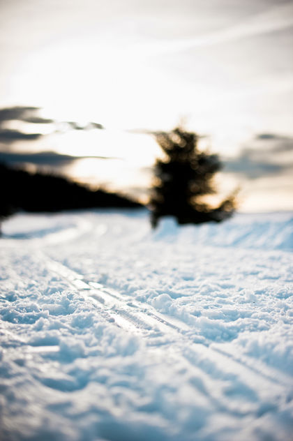 sledge-tracks in the snow - image gratuit #284757