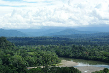 Ecuadorian Amazon rain forest, looking toward the Andes - image gratuit #286627