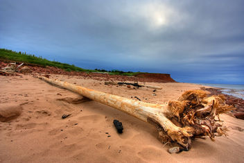 PEI Beach Scenery - HDR - бесплатный image #286777