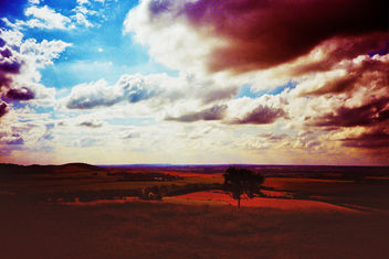 Dunstable Downs - Free image #286977