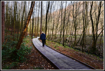 Winding Path - Kostenloses image #291227