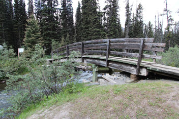 Trail head at boom lake Alberta Canada - Kostenloses image #292997