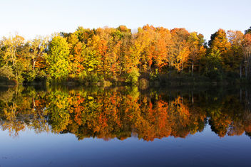 Autumn Reflections - Free image #294307