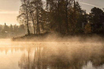 Misty morning - image #294587 gratis