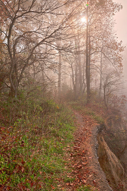 Misty North Point Trail - HDR - Kostenloses image #294927