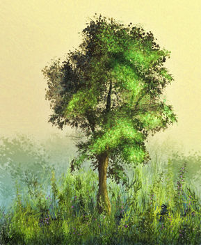 Tree in a Meadow - Free image #296277