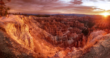 Sunrise at Bryce Canyon - Free image #296907