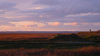 Marshside at sunset looking towards Blackpool Tower - бесплатный image #297267