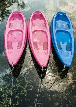 Colorful kayaks docked - Free image #301667