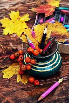 Vase with pencils, rowan and leaves - бесплатный image #301987