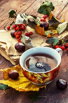 Cup of tea, autumn leaves, chestnuts and old book - image gratuit #302067
