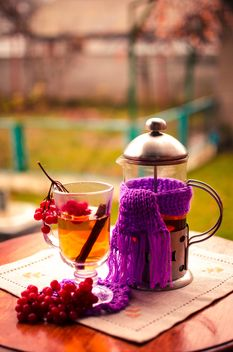 warm tea outdoor with vibrunum - image gratuit #302917