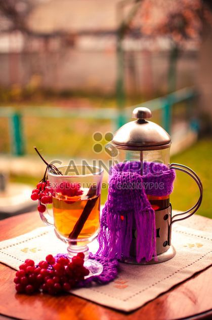 warm tea outdoor with vibrunum - Free image #302917