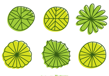 Plant Top View Cartoon Style Vectors - Free vector #303907