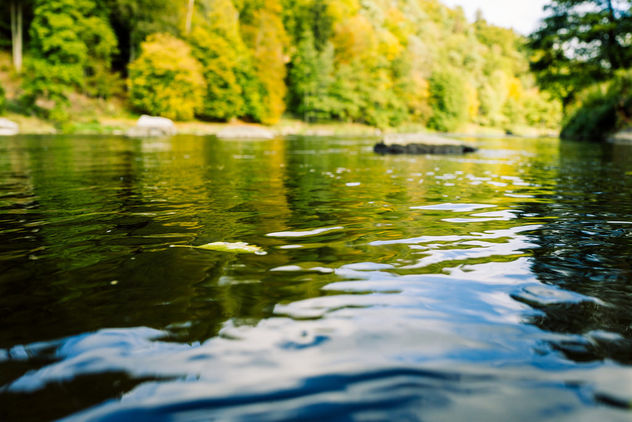 Autumn waters - Free image #303927