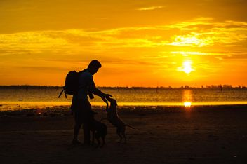 silhouette of man and dog at sunset - image #303987 gratis