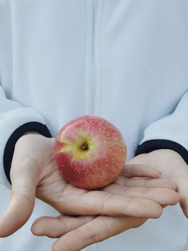 Red apple in hands, #apples - image gratuit #304067