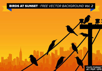 Birds At Sunset Free Vector Background Vol 2 - vector gratuit #305047