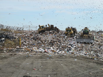 36151 Old Dominion Landfill - Free image #306667