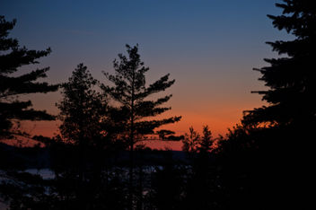 Northern Michigan deep woods sunset - бесплатный image #308187