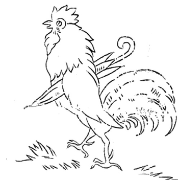 ROOSTER - image gratuit #309587