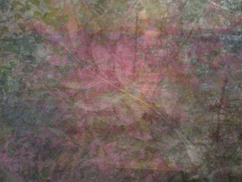 free texture -colours in autumn - image gratuit #310607