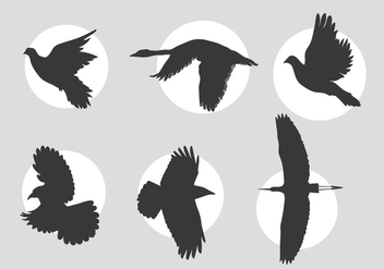 Birds in flight vectors - vector gratuit #317427